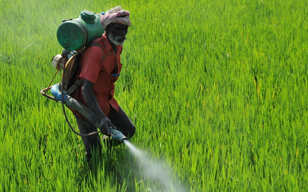 My dear farmers: Please ponder the link between chemical pesticides and suicides