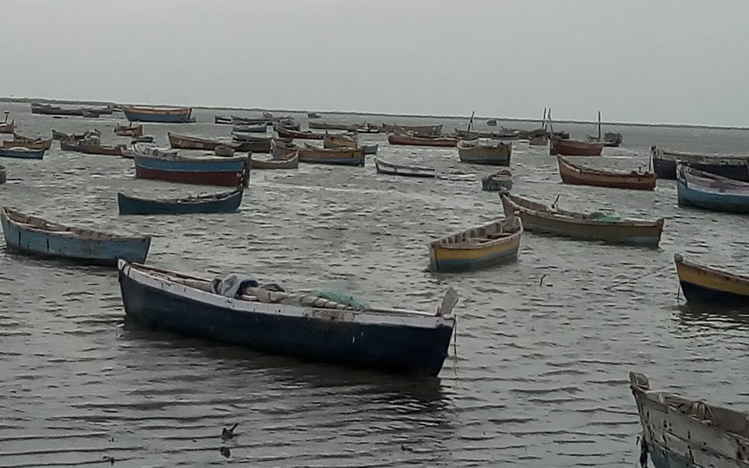Rameswaram fishermen charged under harsh Lankan law; Indian high commissioner's plea rejected