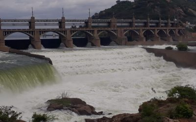 Tragedy of bounty: Precious Cauvery water is likely to be lost to the sea, and little can be done to prevent it