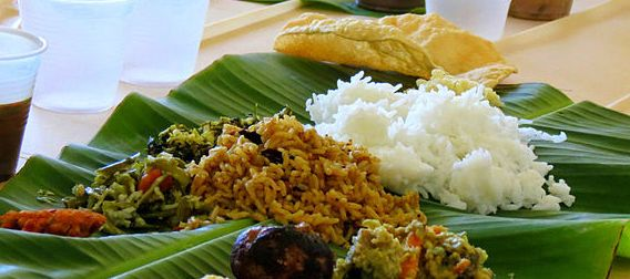 Looming rice scarcity in TN? By 2041, state likely to produce only half the rice per person