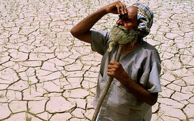Don't sue poor farmers when they are being shortchanged